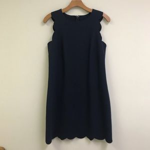 J Crew Factory scalloped shift dress in navy
